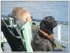 MS-Rigoletto-Hundekreuzfahrt_20101014045340_0579