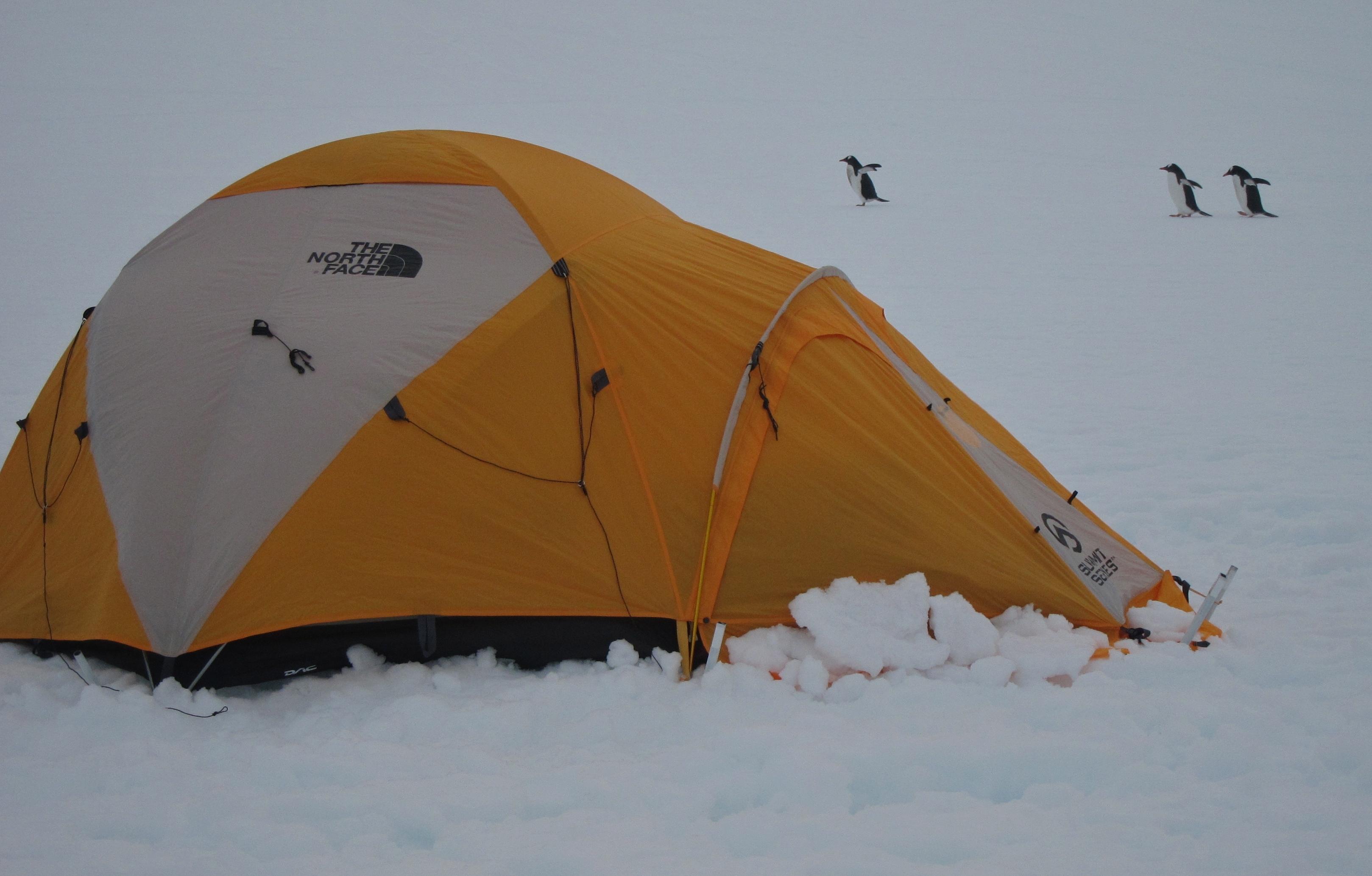 Hurtigruten – Abenteuer-Nacht in der Antarktis
