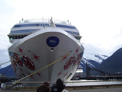 Norwegian Pearl Bug